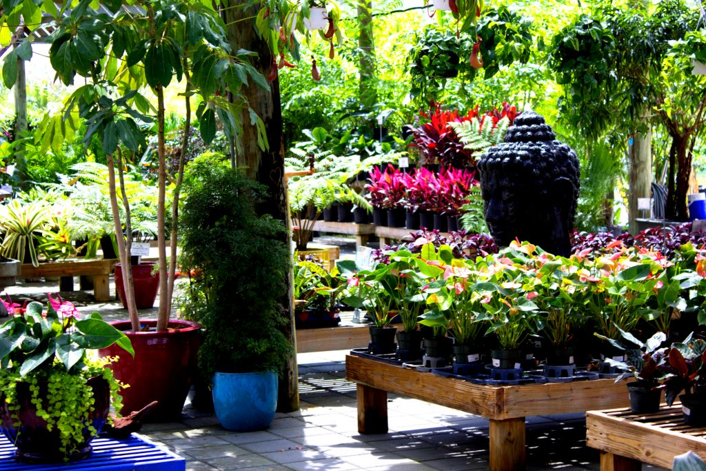 Casaplanta Miami Garden Center