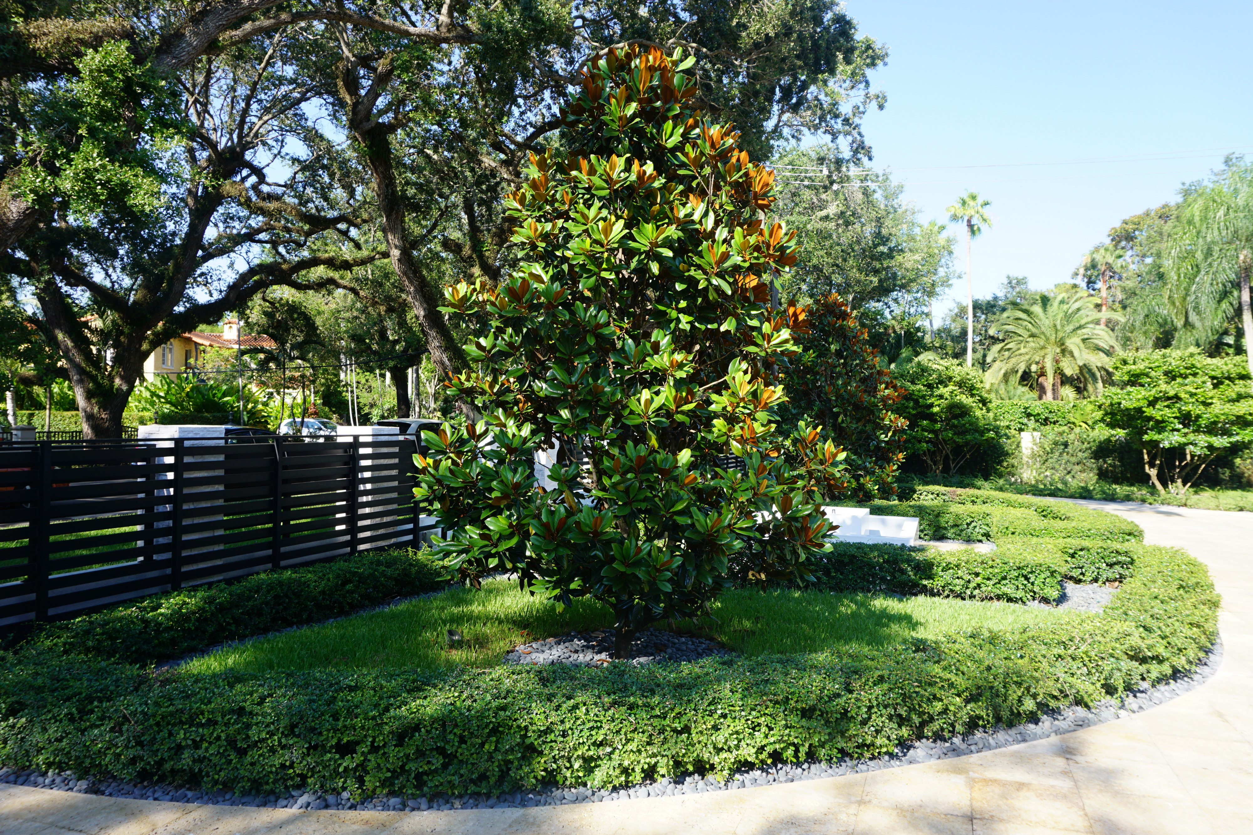 Coral gables residential landscaping casaplanta garden for Residential landscaping